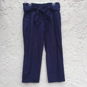 CARTONNIER Anthropologie Size 10 South Coast Pants
